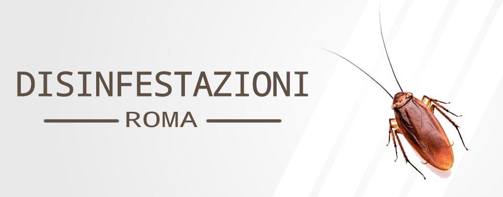 Appia Pignatelli - Servizio di Disinfestazione Blatte a Appia Pignatelli.