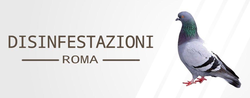 Ardeatina - Servizio di Disinfestazione Piccioni a Ardeatina.