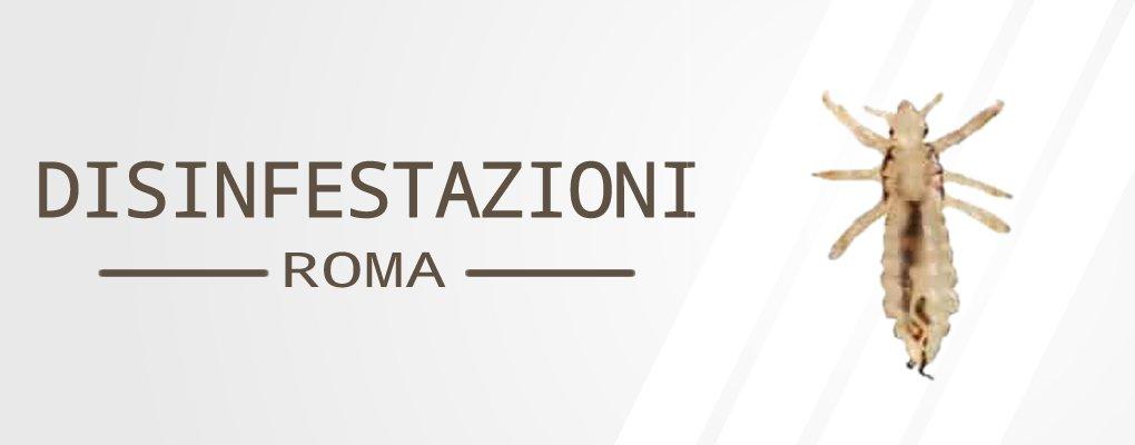 Metri Furio Camillo - Servizio di Disinfestazione Pidocchi a Metri Furio Camillo.