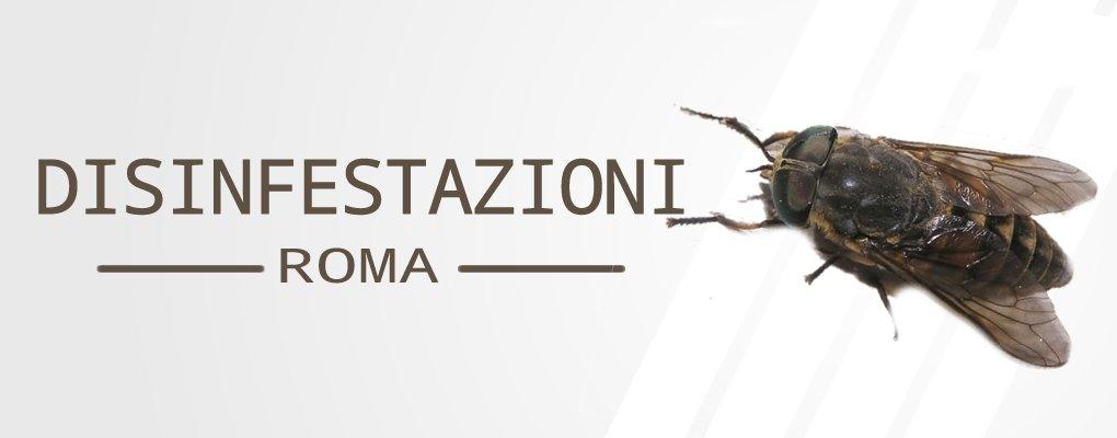 Metri Furio Camillo - Servizio di Disinfestazione Tafani a Metri Furio Camillo.