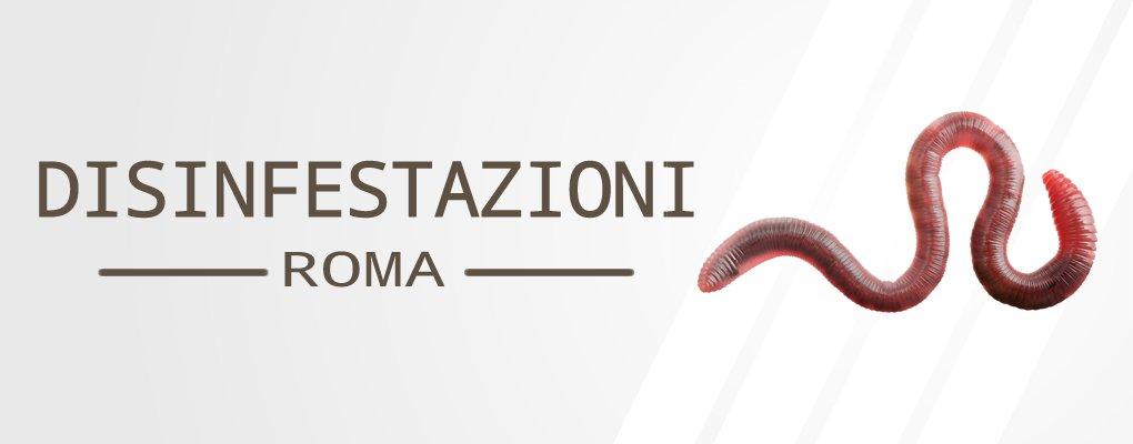 Metri Furio Camillo - Servizio di Disinfestazione Vermi a Metri Furio Camillo.