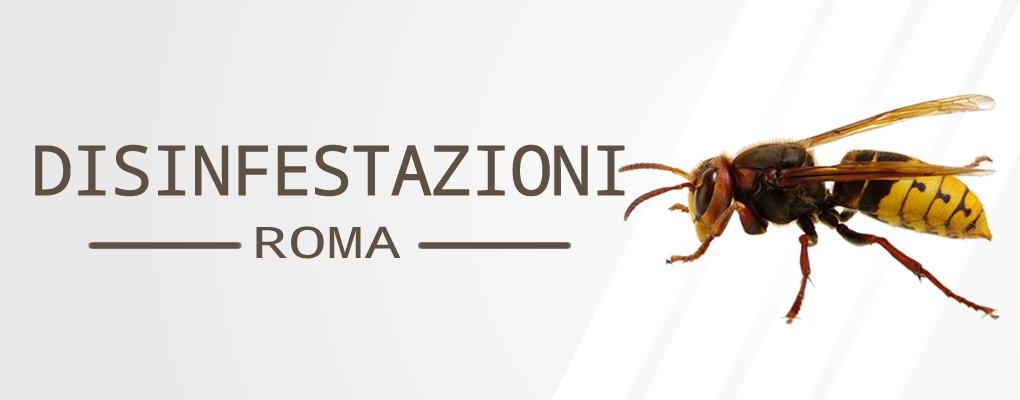 Appia Pignatelli - Servizio di Disinfestazione Vespe a Appia Pignatelli.