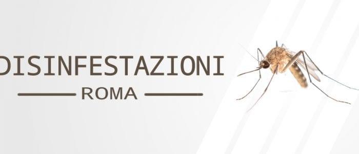 Disinfestazione Roma
