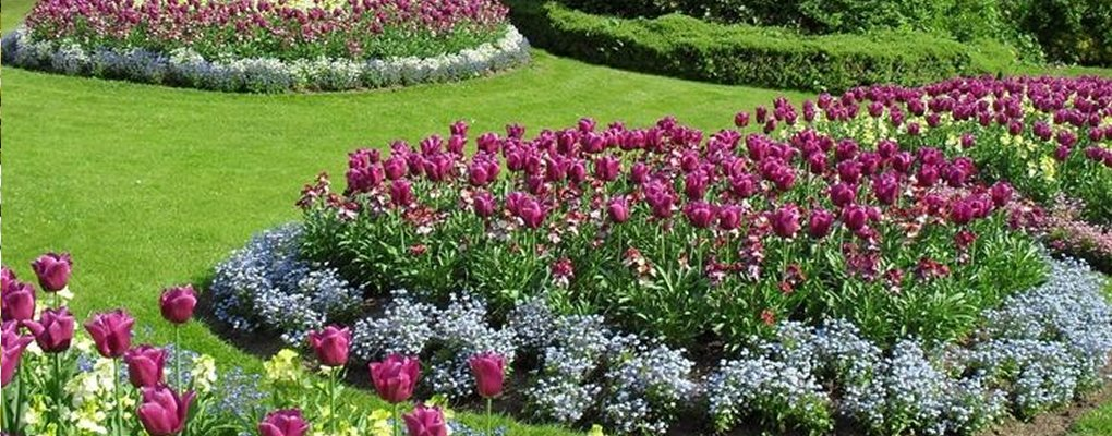 Esquilino - Giardinieri: fiori a Esquilino