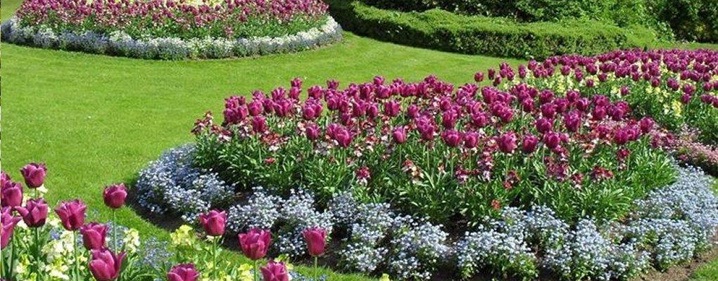 Pigneto - Giardinieri: fiori a Pigneto